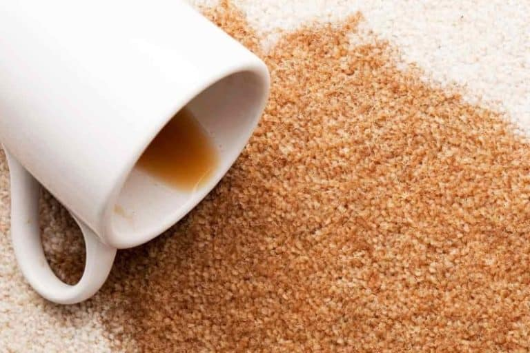 How to Get Coffee Out of Carpet – 7 Easy Ways