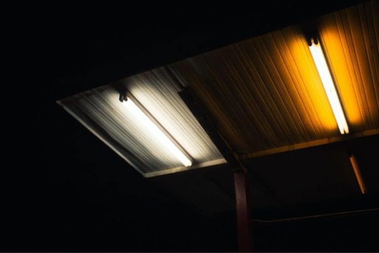 Read more about the article Fluorescent Light Won't Turn on Sometimes or at All