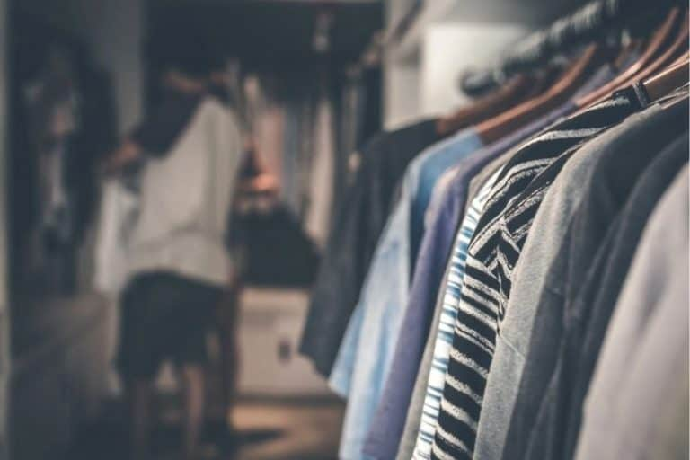 Read more about the article Wardrobe vs Closet: What Is the Difference?
